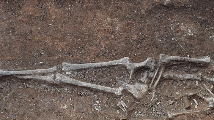 Μοναδική κλίνη 2.100 ετών και μια πλούσια νεκρή με αινιγματική ταυτότητα
