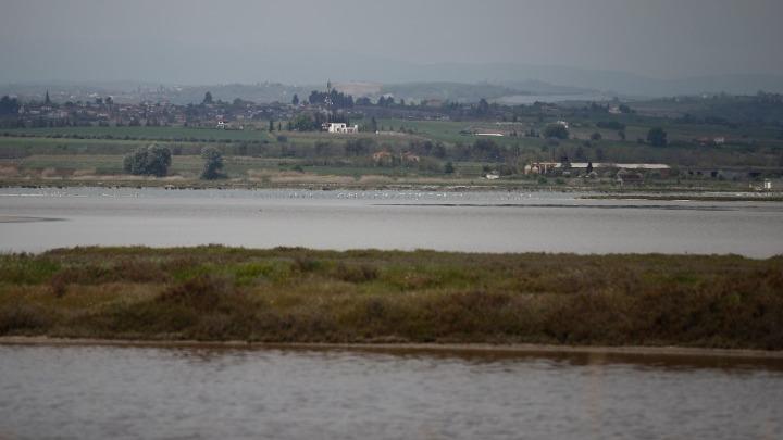 Λιμνοθάλασσα Αλυκής Κίτρους: Κραυγή προστασίας για ένα «σιωπηλό» οικοσύστημα