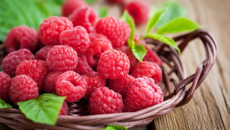 raspberries:-ta-ametrita-ofeli-ton-agapimenon-mas-kokkinon-karpon
